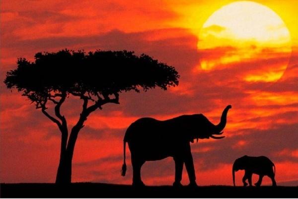 Parque Nacional Kruger